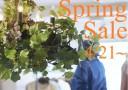 sale春